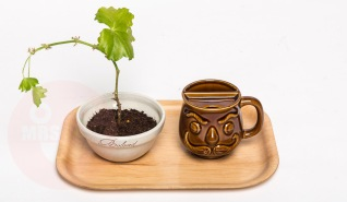 """On this plywooden tray: """"Abraham"""" mug and a personalized ceramic bowl from the 1970s containing a Geranium plant (All items in mint condition, exept for the plant) custom made 50 th birthday tray (€ on request)"""
